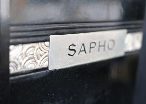 Sapho de Daudet, relié par Jotau